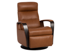 Picture of IMG Peak Standard Recliner - Customizable